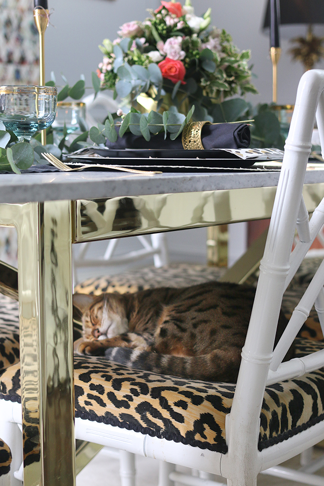 Bengal cat sleeping on leopard print chair