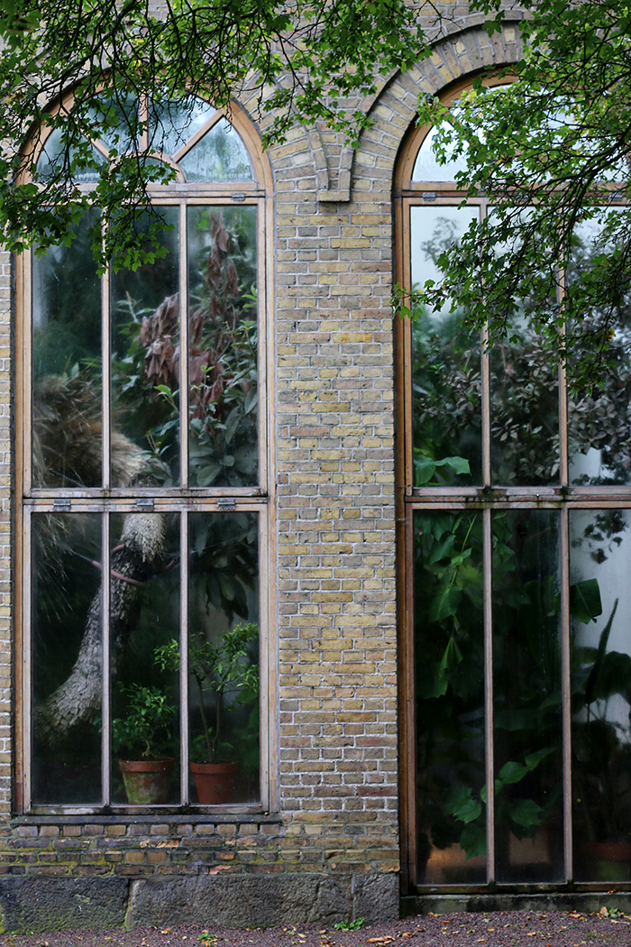 Botanical Gardens Lund 3