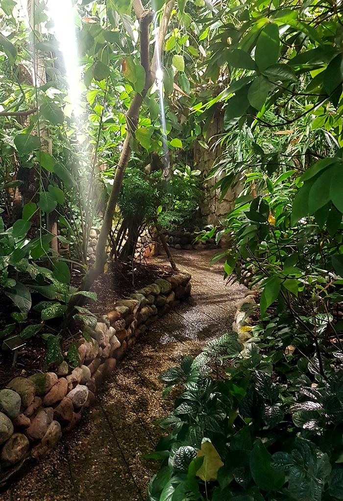 Botanical Gardens Lund 4
