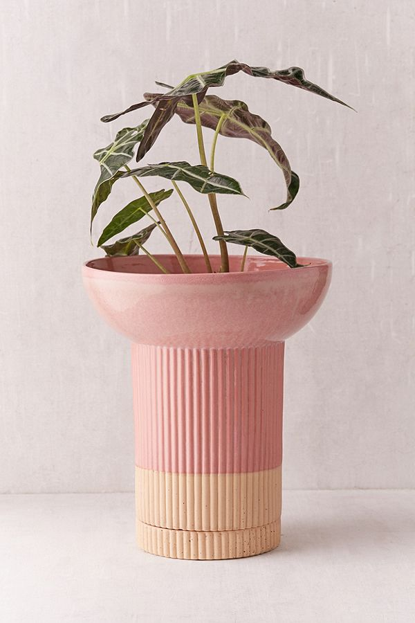 Pink and Nude Raised Plant pot from Urban Outfitters