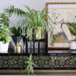12 of the Best Raised Plant Stands