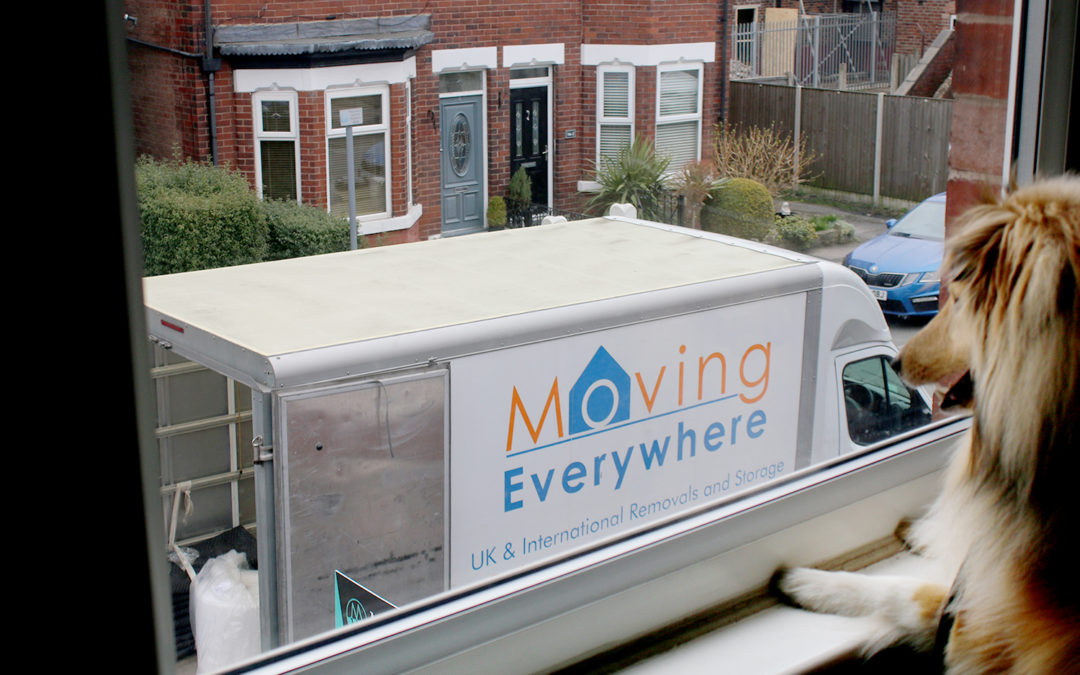 How Using a Moving Company Took The Stress Out of Moving House