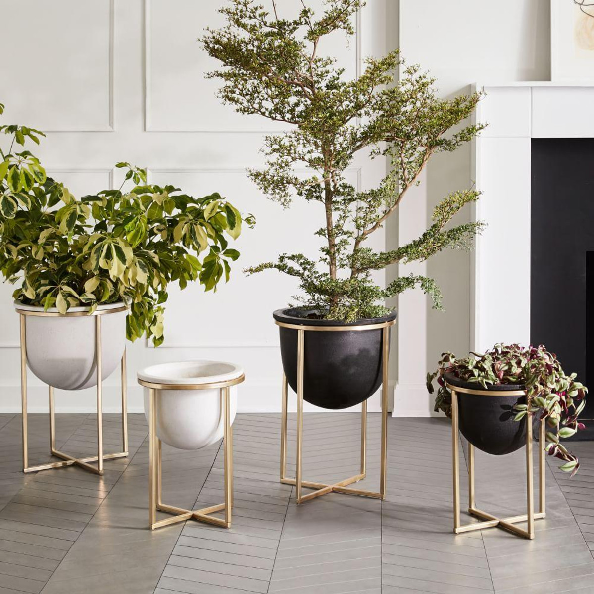 standing planter from West Elm
