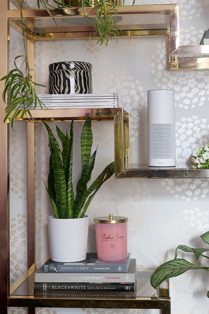 Gold shelf styling with plants and Amazon Echo