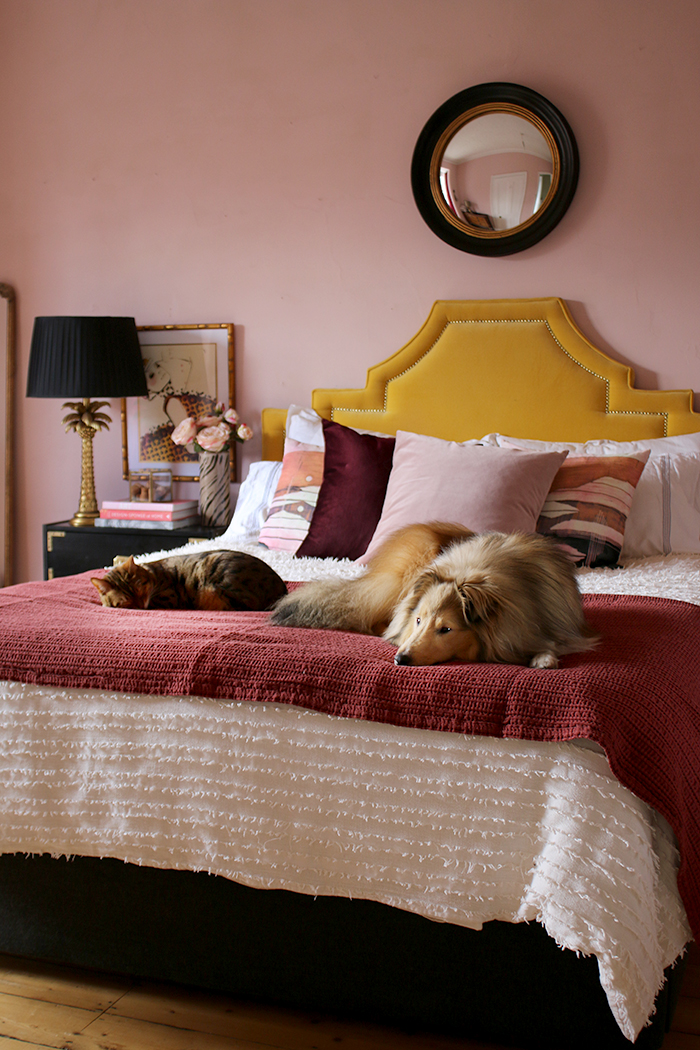 Glam bedroom with pink walls, yellow headboard with dog and cat on bed