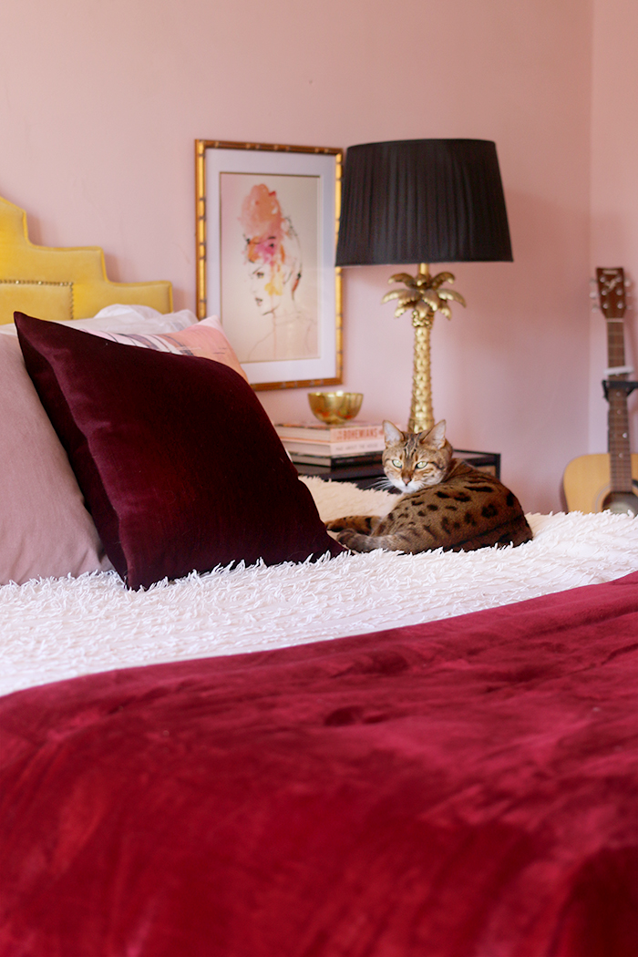 Blush pink bedroom with yellow headboard and bengal cat on bed