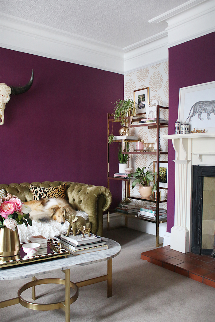 Deep plum living room with gold accents and styled shelving unit
