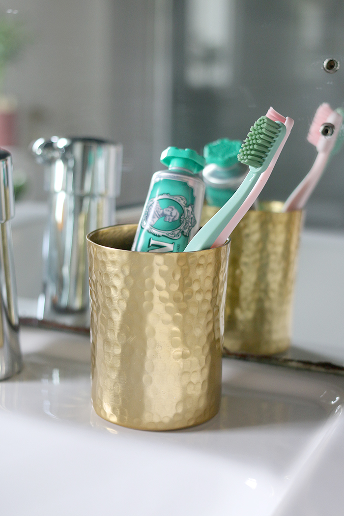 stylish toothpaste holder and toothbrushes