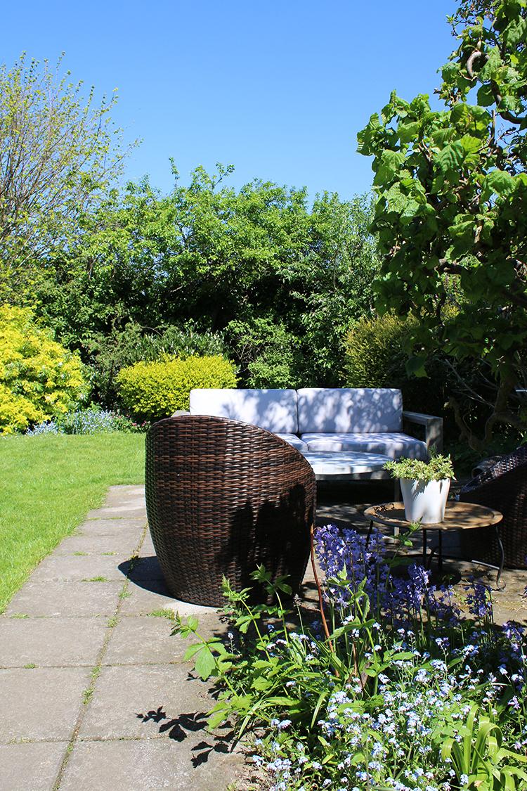 North facing garden