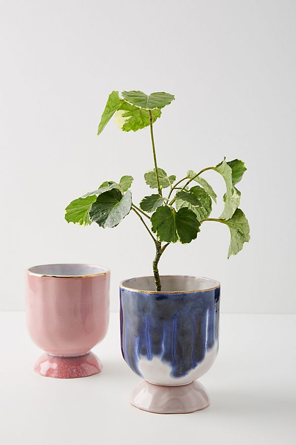 Anthropologie plant pots perfect for the windowsill