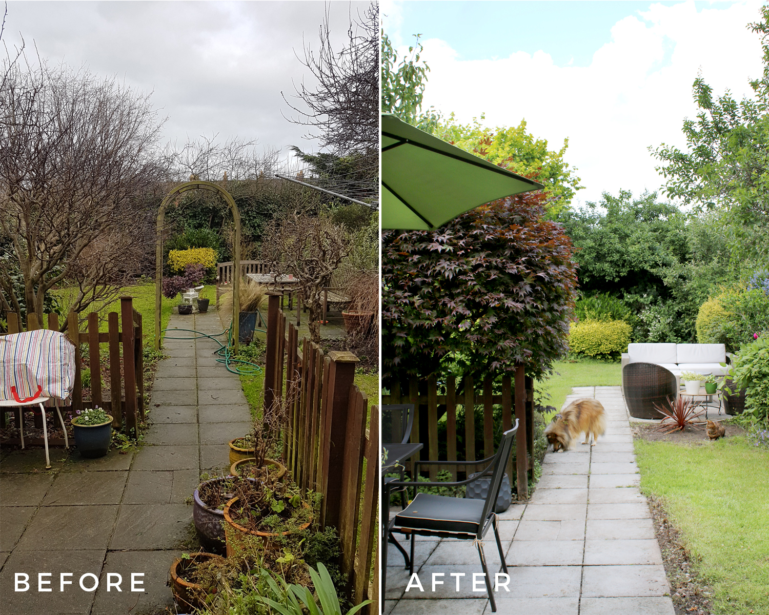 Garden before and after Jan 2018 to Jun 2018