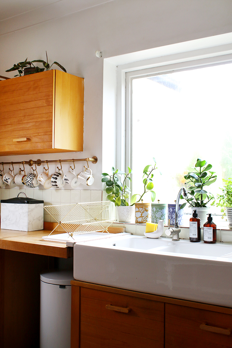 ceramic apron sink with plants on windowsill