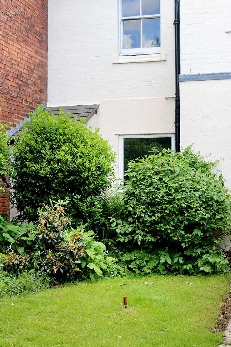 rear garden Victorian house
