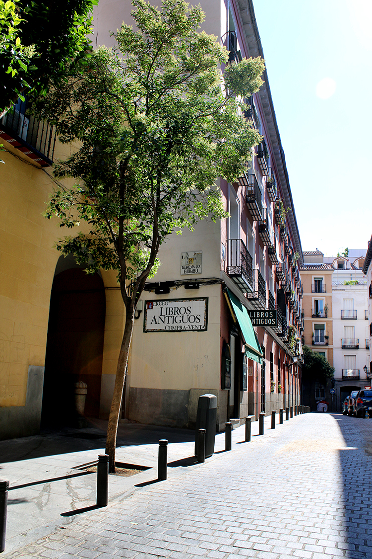 Be sure to head over to the Malasaña district when visiting Madrid!