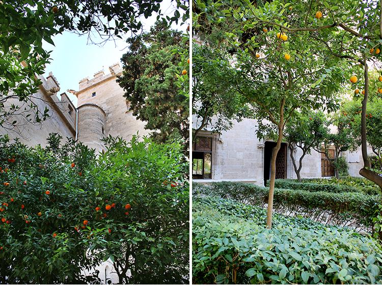 Llotja de la Seda Orange Garden Valencia