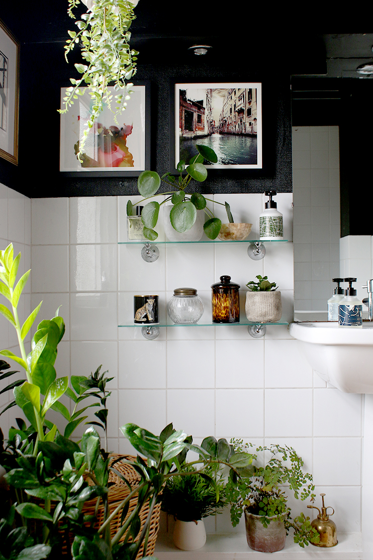 bathroom with lots of plants