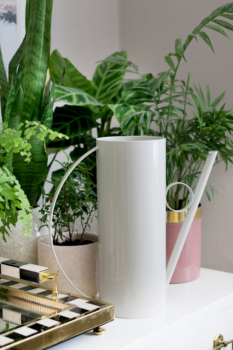 Contemporary and Stylish Indoor Watering Can