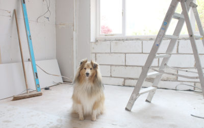 Renovation Diaries: The Build Work is Nearly Done!