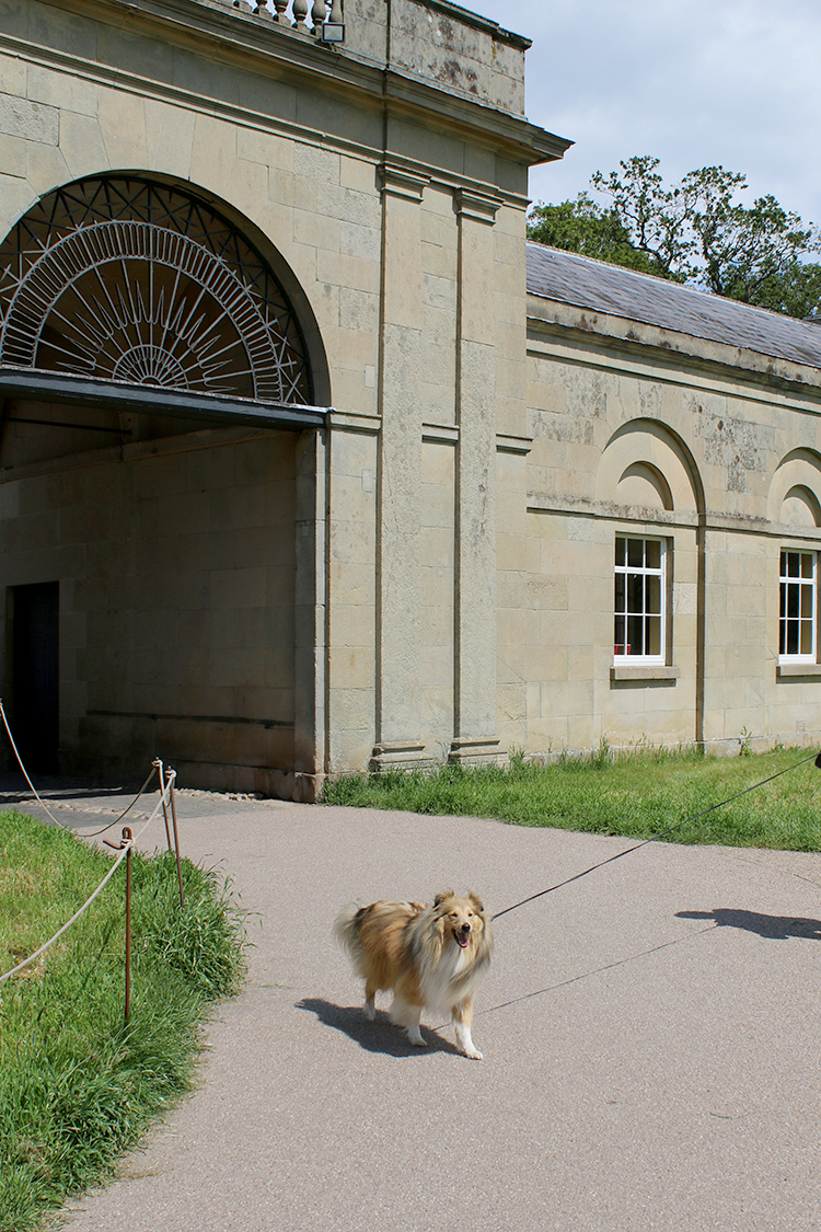 Attingham Park Shropshire with Sheltie Dog Entrance