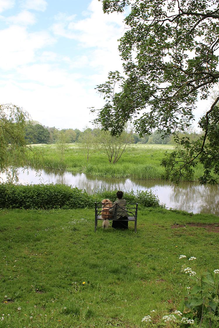 River Attingham Park