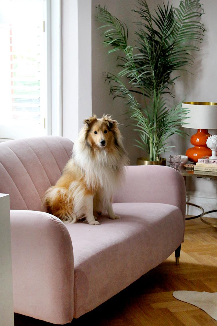 Pet-resistant Velvet Sofa