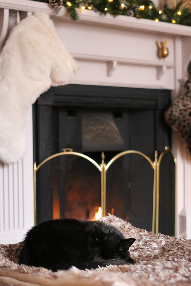 black cat sleeping in front of roaring fireplace