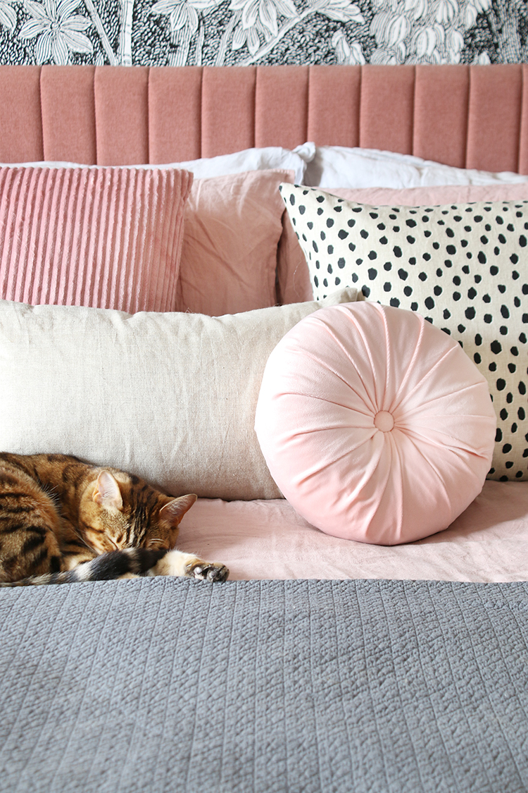 pink bed with sleeping bengal cat