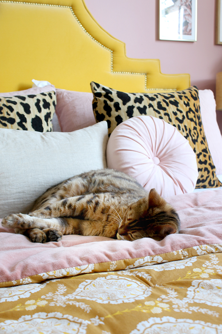 bengal cat sleeping on bed with pink velvet and mustard yellow patterned bedspread