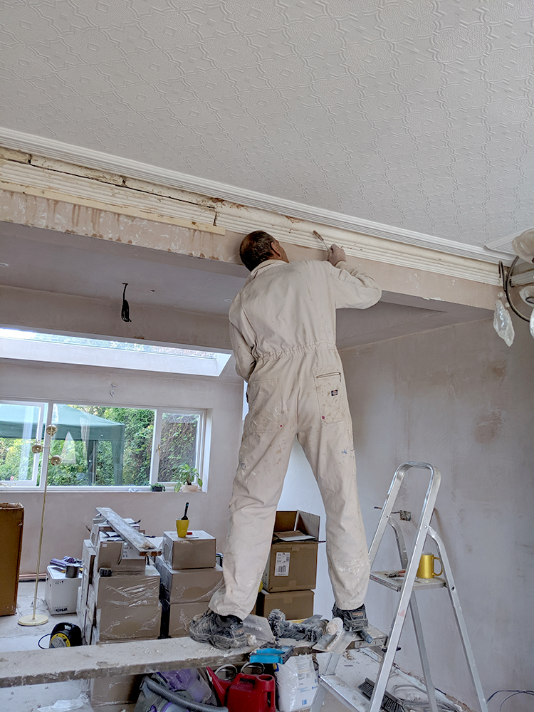 reinstating plaster cornice in ceiling of victorian home