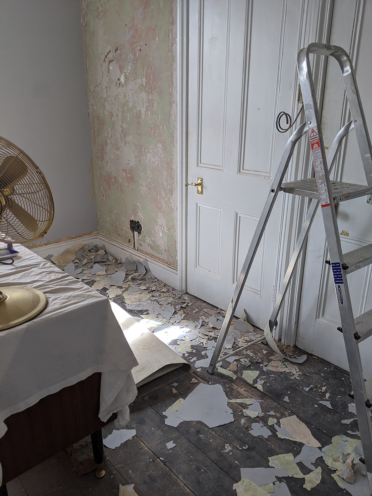 scraping loose paint off plaster walls
