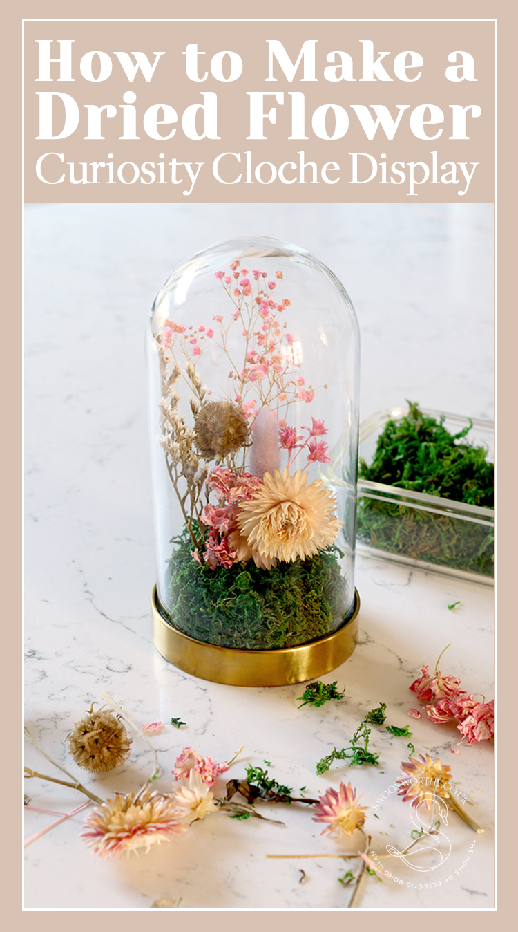 How to Make a DIY Dried Flower Curiosity Cloche