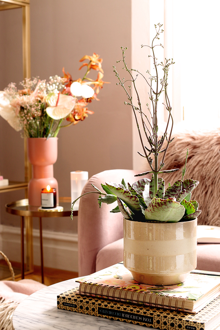 picture of succulent in foreground with large bouquet of flowers in background in shades of pink and tan