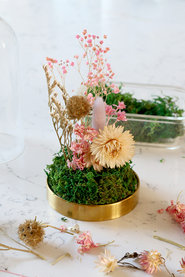 dried floral arrangement under a glass dome