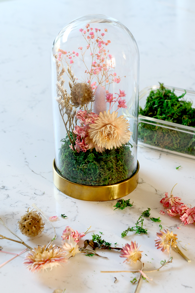 Finished dried flower cloche display