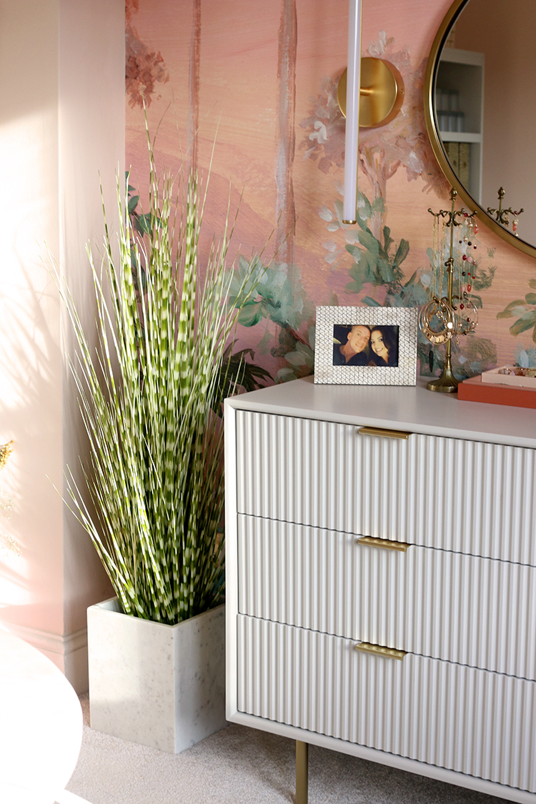 chest of drawers with plant next to it
