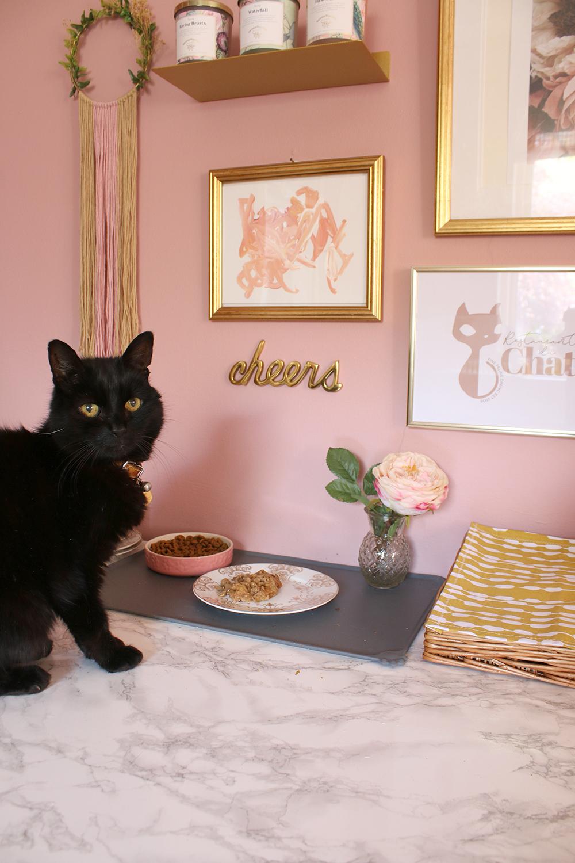 Pablo at his feeding station