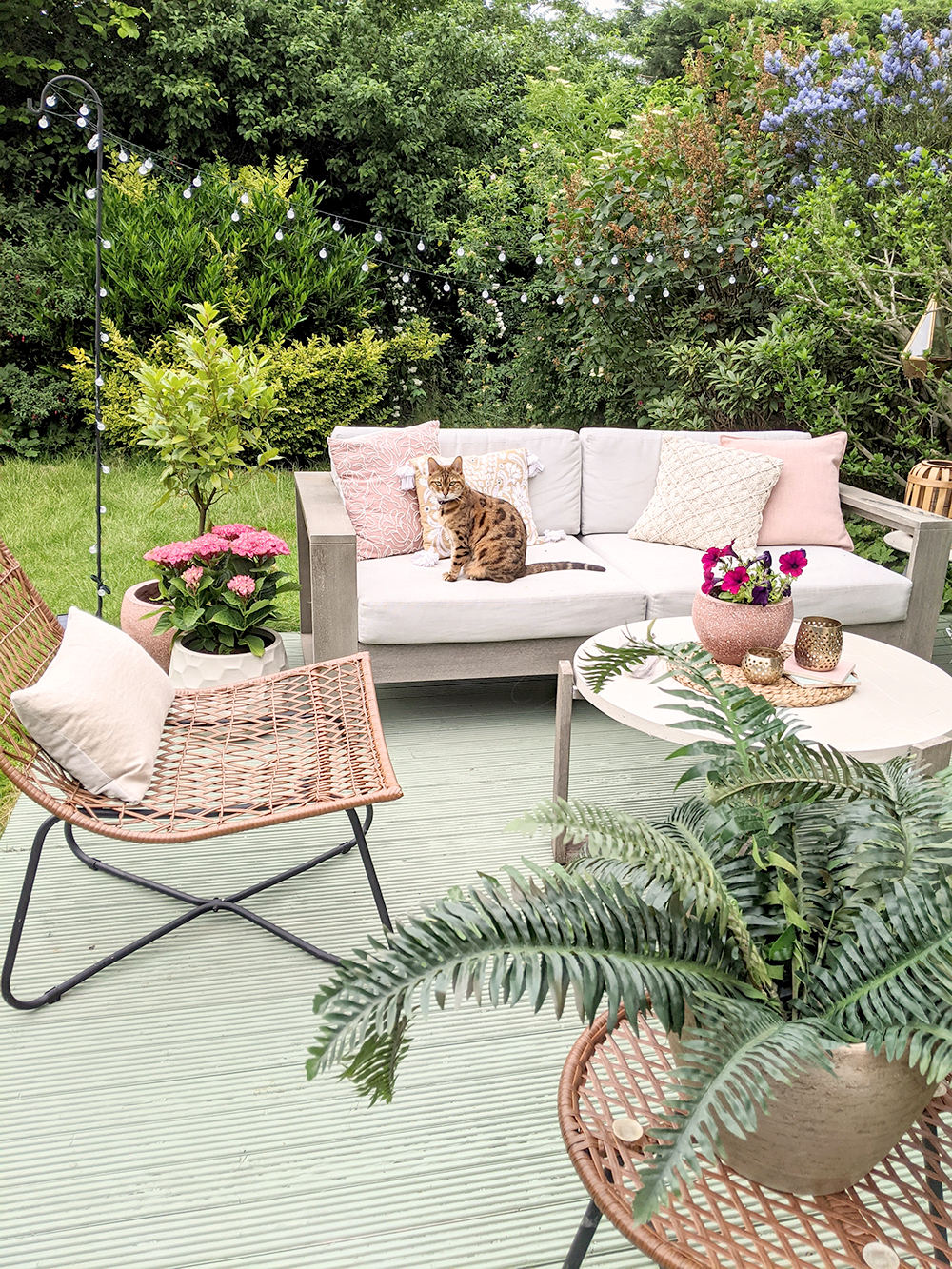 bengal cat sat on outdoor sofa on green decking